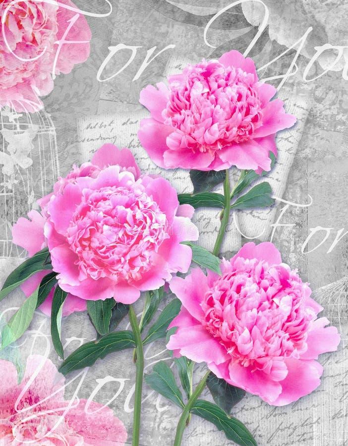 Fiore della cartolina Le congratulazioni cardano con le belle peonie su un fondo e su un testo di lerciume per voi immagine stock libera da diritti