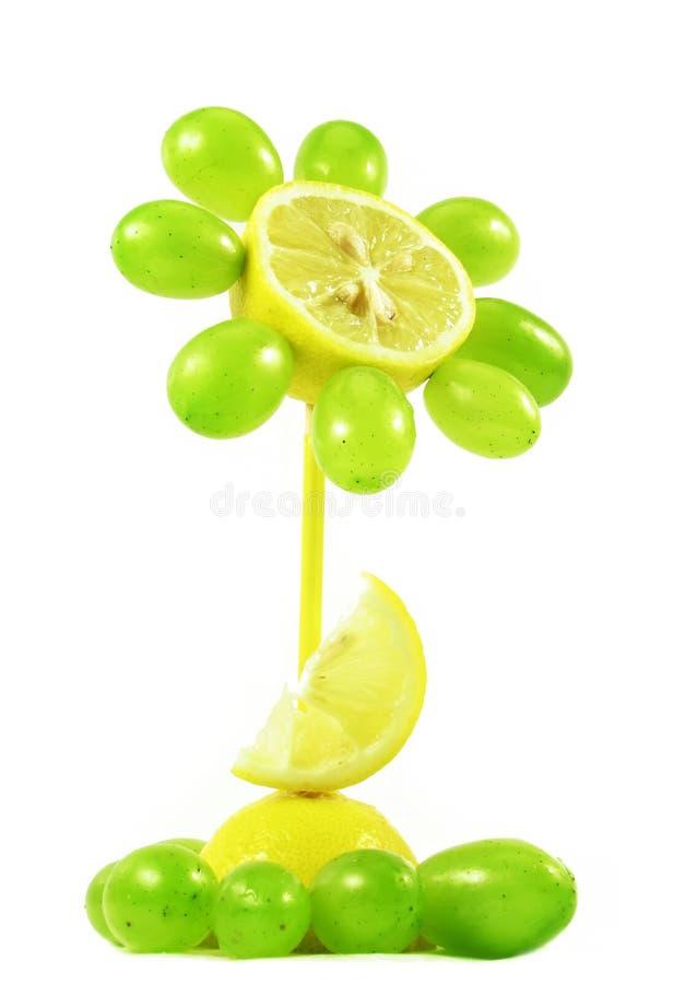 Download Fiore Della Frutta Su Bianco Immagine Stock - Immagine di bianco, isolato: 3138463