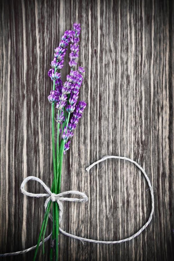 Fiore della lavanda su priorità bassa di legno immagini stock