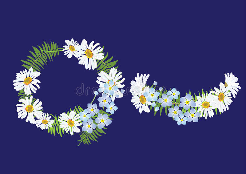 Fiore della margherita di corona con la felce, la vista superiore della fascia e la vista laterale royalty illustrazione gratis