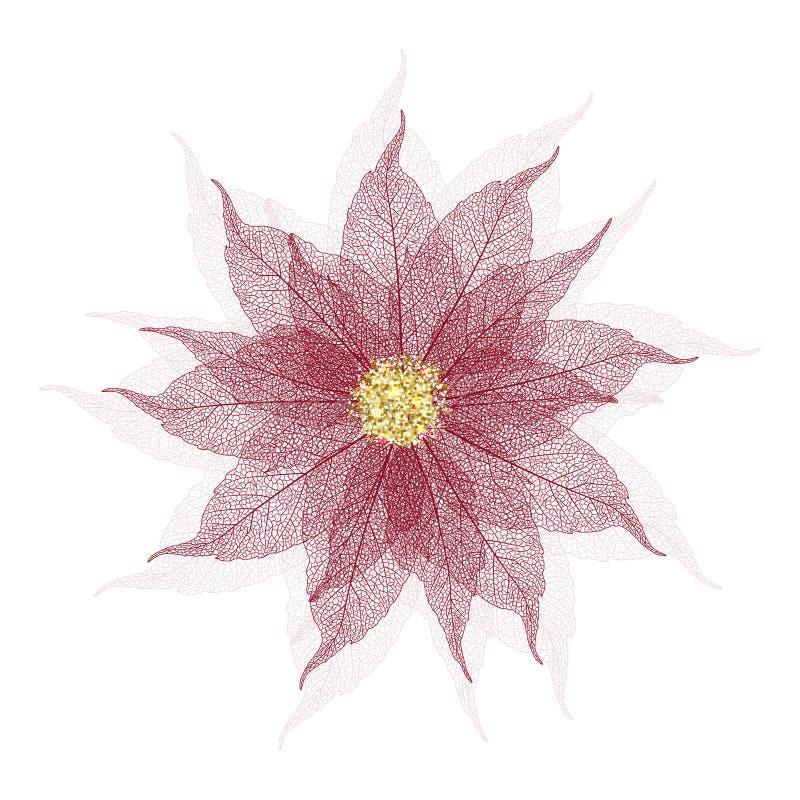Fiore della stella di Natale royalty illustrazione gratis