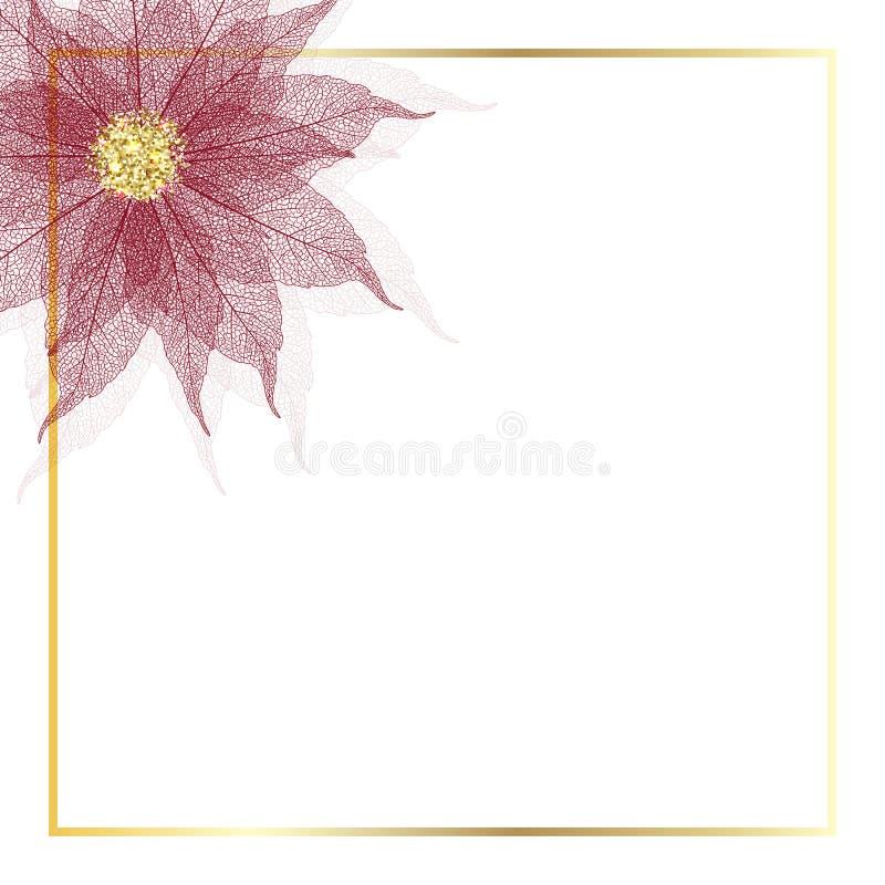 Fiore della stella di Natale illustrazione di stock