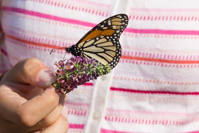 Fiore della tenuta della mano del ` s della ragazza e farfalla di monarca immagini stock libere da diritti
