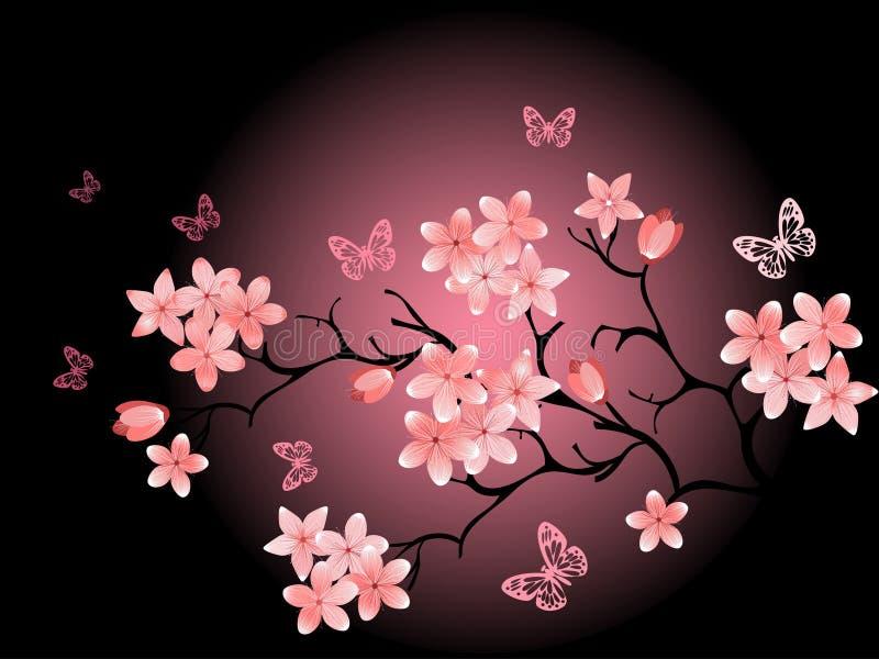 Fiore di ciliegia, priorità bassa nera royalty illustrazione gratis