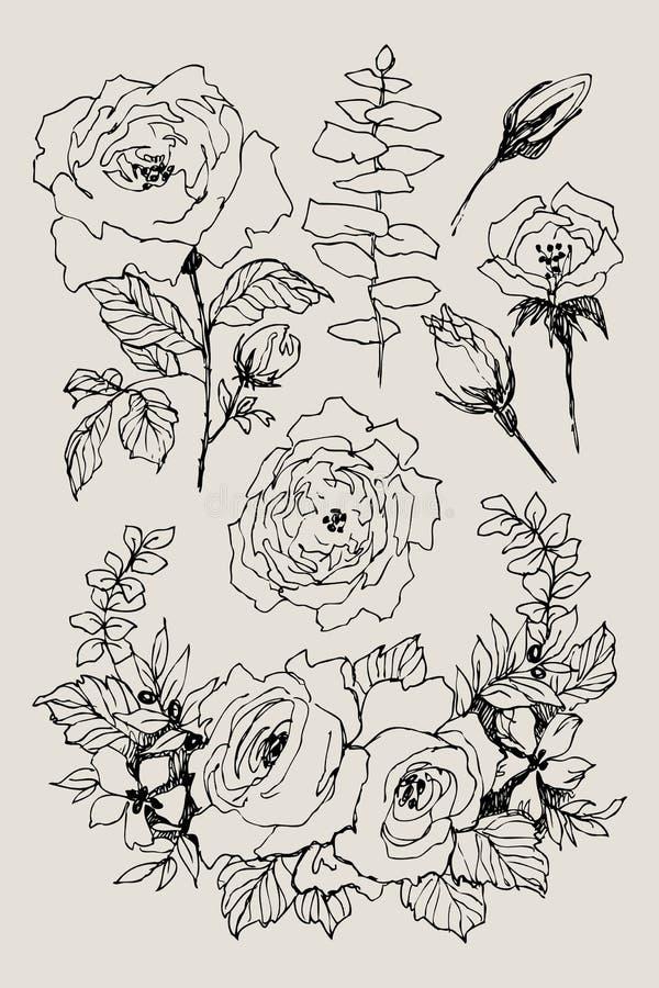 Fiore di fioritura Metta la raccolta Rami d'annata disegnati a mano del fiore su fondo marrone Illustrazione di vettore rose royalty illustrazione gratis