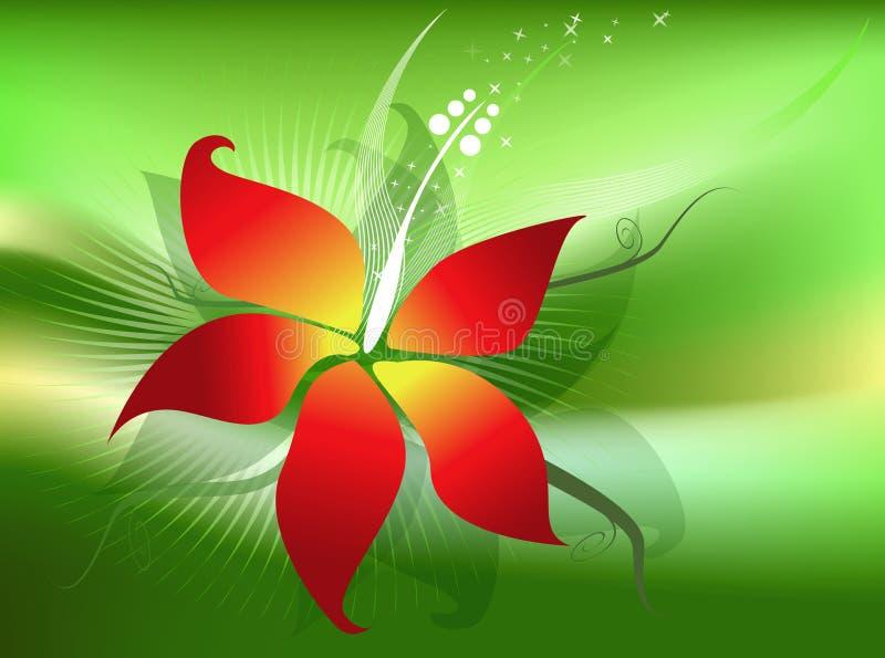 Fiore di Hibicus illustrazione di stock