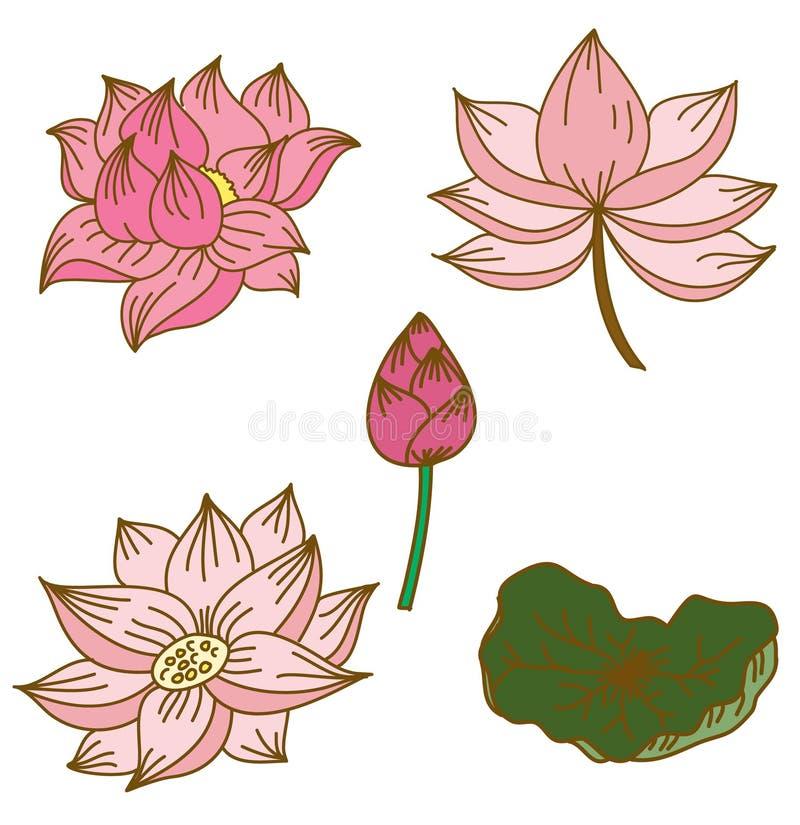 Fiore di loto disegnato a mano del cerchio illustrazione - Modello di base del fiore ...