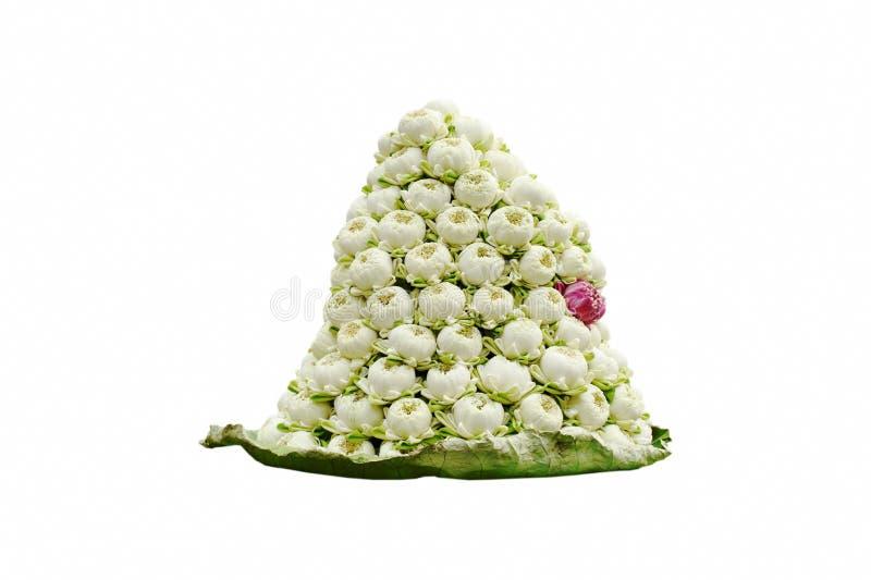 Fiore di Lotus per l'offerta del Buddha sulla foglia nel fondo bianco fotografie stock