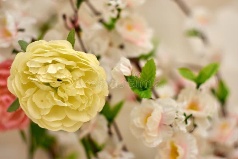 Fiore di plastica di sakura di rosa della primavera che decora un giardino fotografia stock