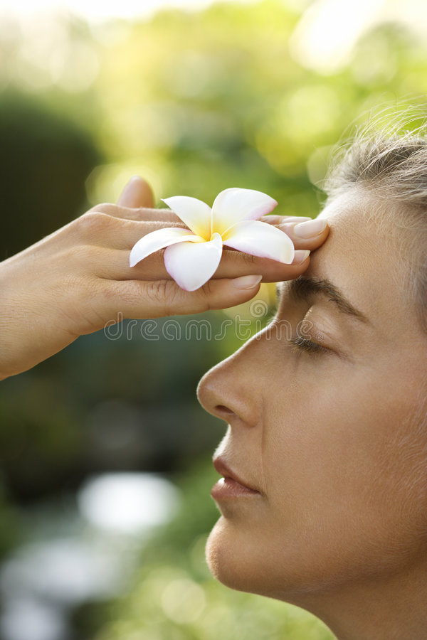 Fiore di plumeria della holding della donna. fotografia stock libera da diritti