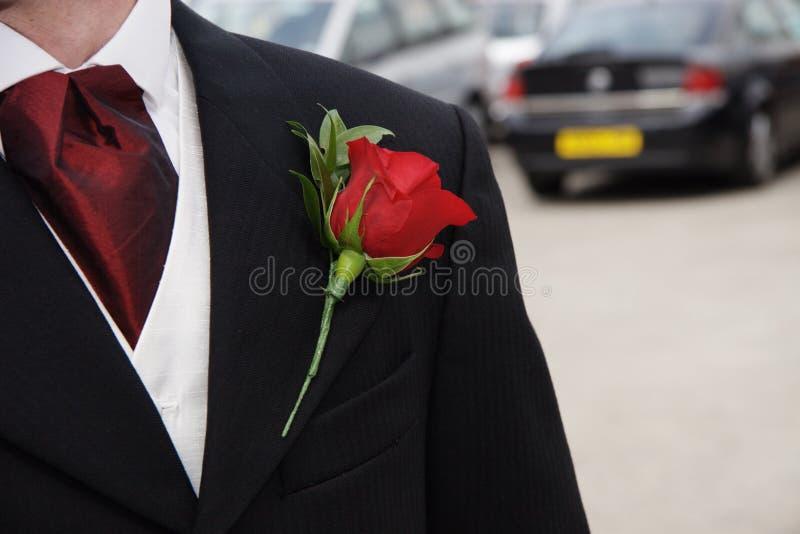 Fiore di rosa del foro di tasto di colore rosso immagine stock