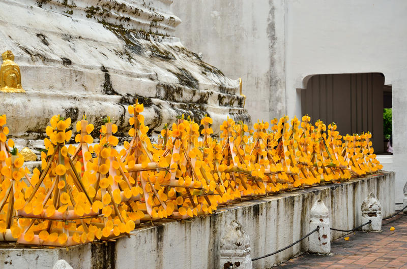 Fiore giallo di fila immagine stock libera da diritti