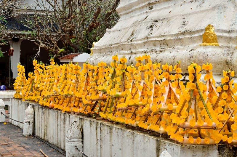Fiore giallo di fila fotografie stock