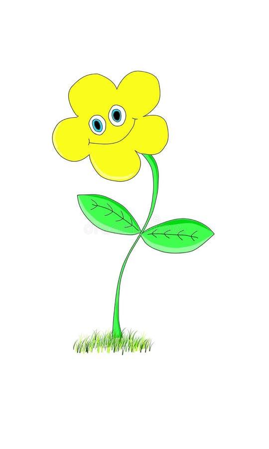 Fiore giallo sorridente su un fondo bianco fotografie stock