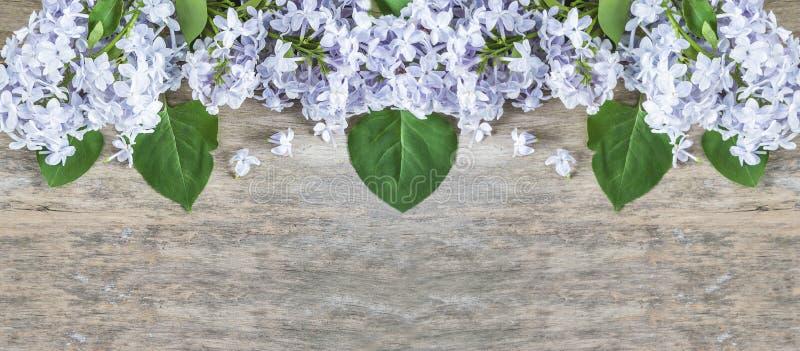 Fiore lilla blu con le foglie su vecchio fondo di legno con il poliziotto immagini stock libere da diritti