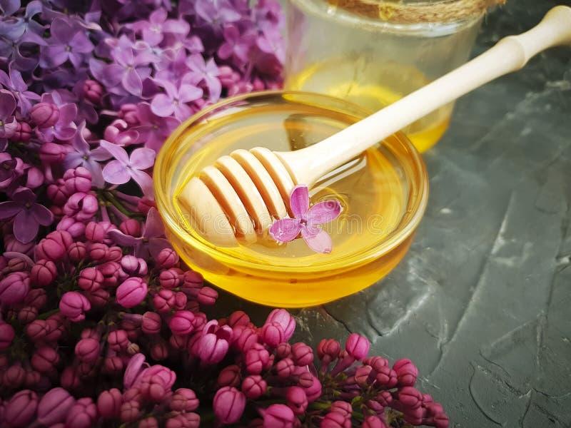 Fiore lilla del miele saporito su fondo concreto nero, composizione fotografia stock libera da diritti