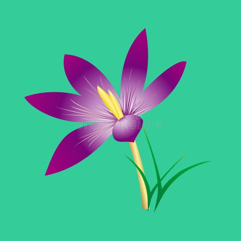 Fiore lilla elegante delicato immagini stock