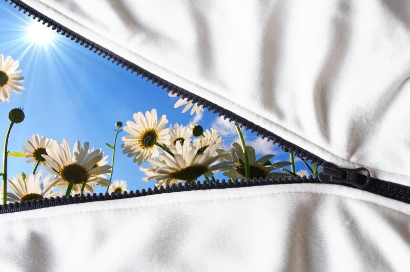 Fiore nascosto fotografie stock