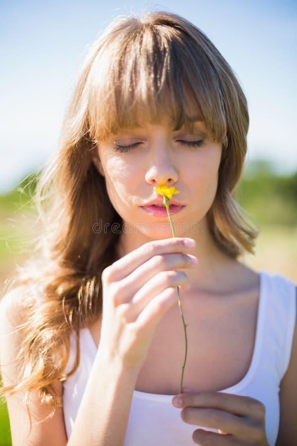 Fiore odorante della giovane donna pensierosa fotografia stock libera da diritti