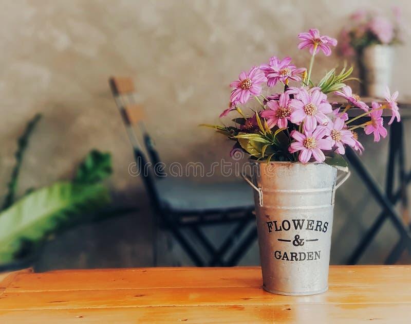 Fiore porpora nel barattolo di latta fotografia stock libera da diritti