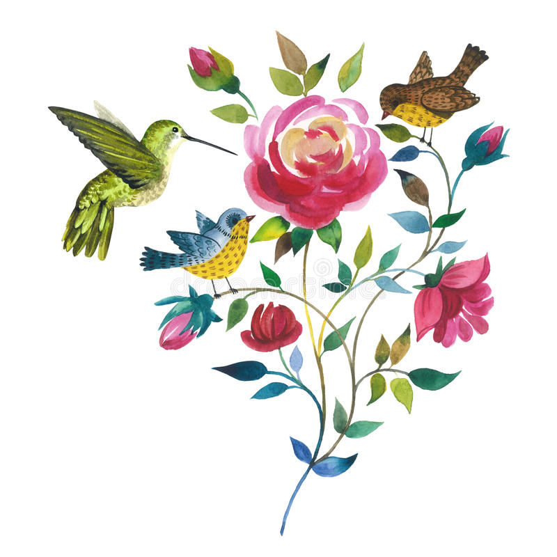 Fiore rosa del Wildflower con il colibri dell'uccello in uno stile dell'acquerello isolato royalty illustrazione gratis