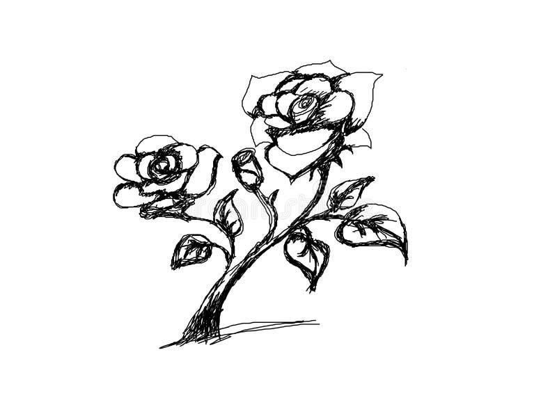 Fiore rosa disegnato a mano illustrazione vettoriale