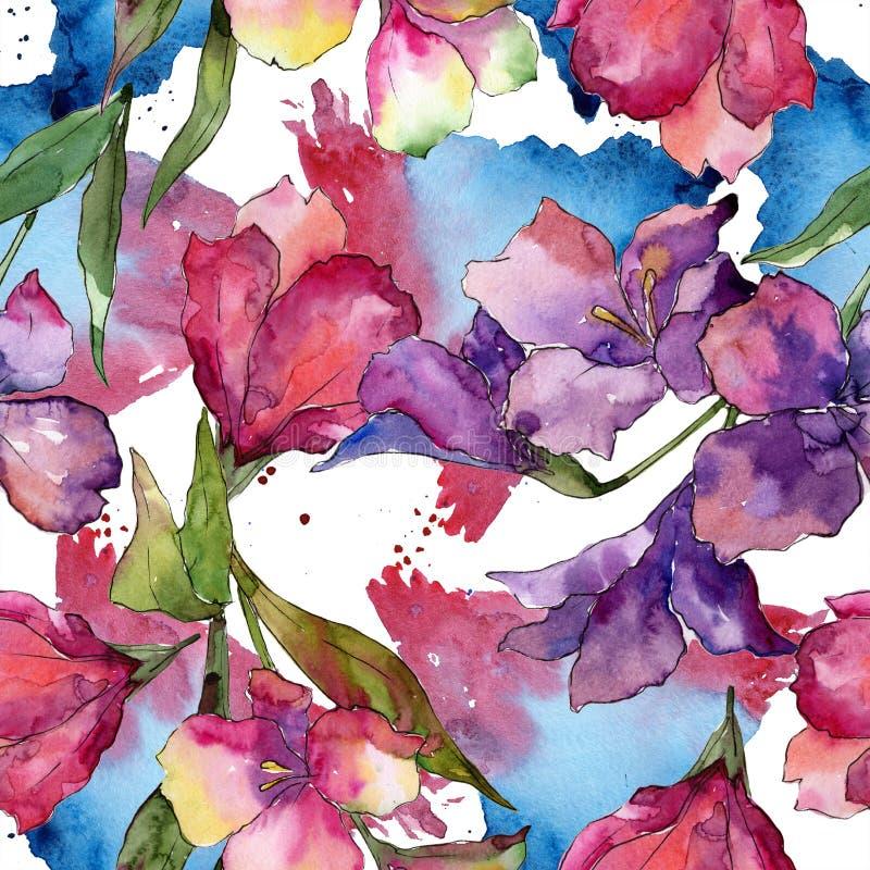 Fiore rosa e porpora dell'acquerello di alstroemeria Fiore botanico floreale Modello senza cuciture del fondo royalty illustrazione gratis