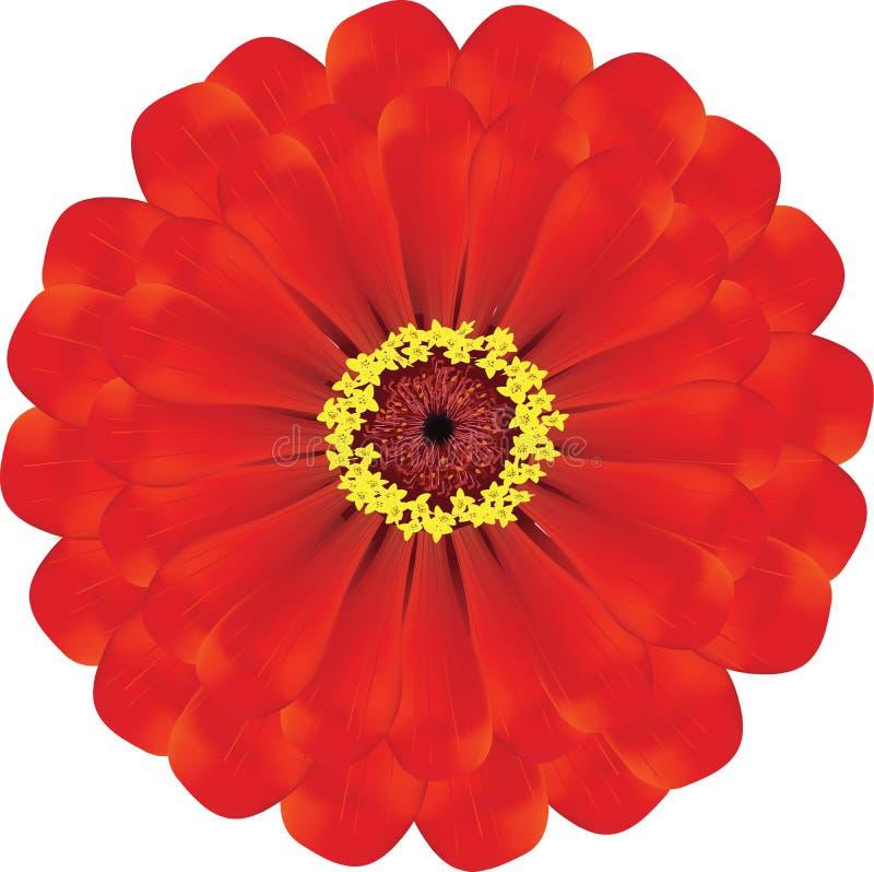 Fiore rosso royalty illustrazione gratis