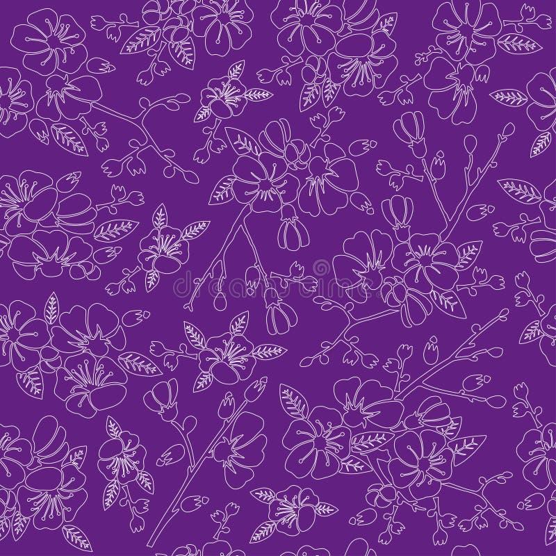 Fiore, sakura, molla, vettore, fondo, floreale, immagine stock libera da diritti