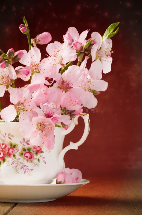 Fiore In Teacup Immagine Stock Libera da Diritti
