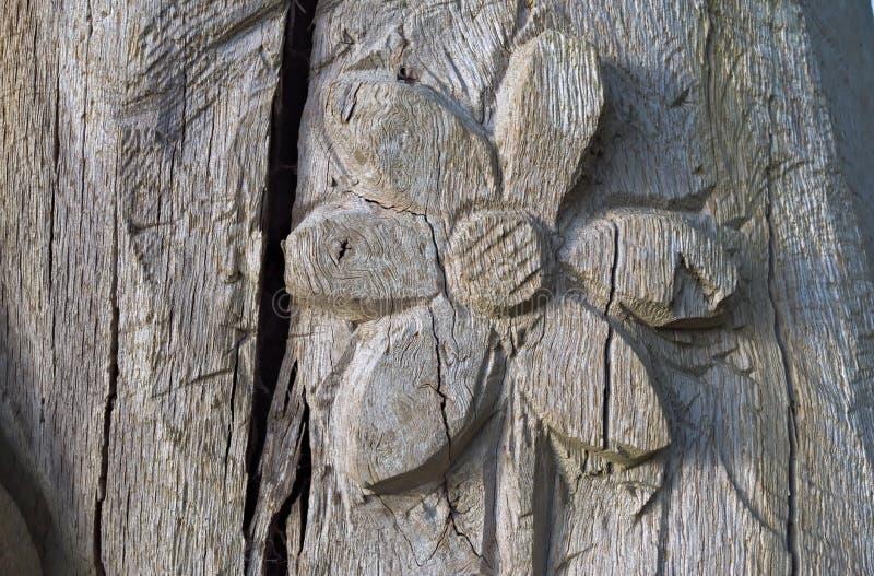 Fiore in un tronco di albero fotografie stock libere da diritti