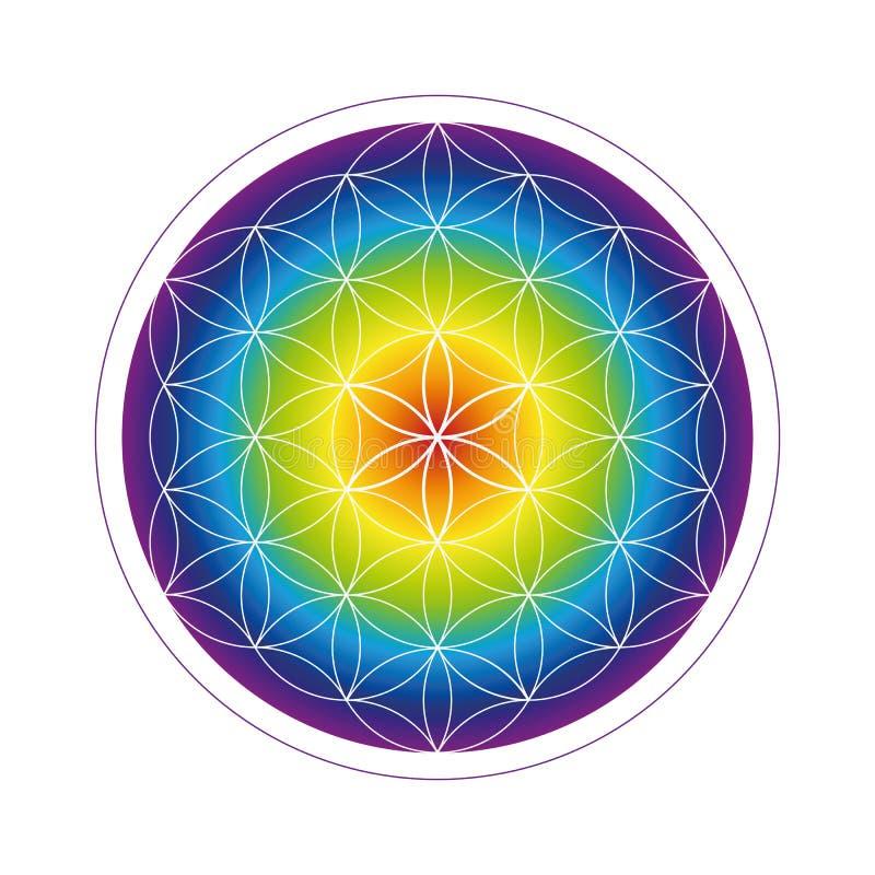 Fiore variopinto della geometria di vita nei colori dell'arcobaleno royalty illustrazione gratis