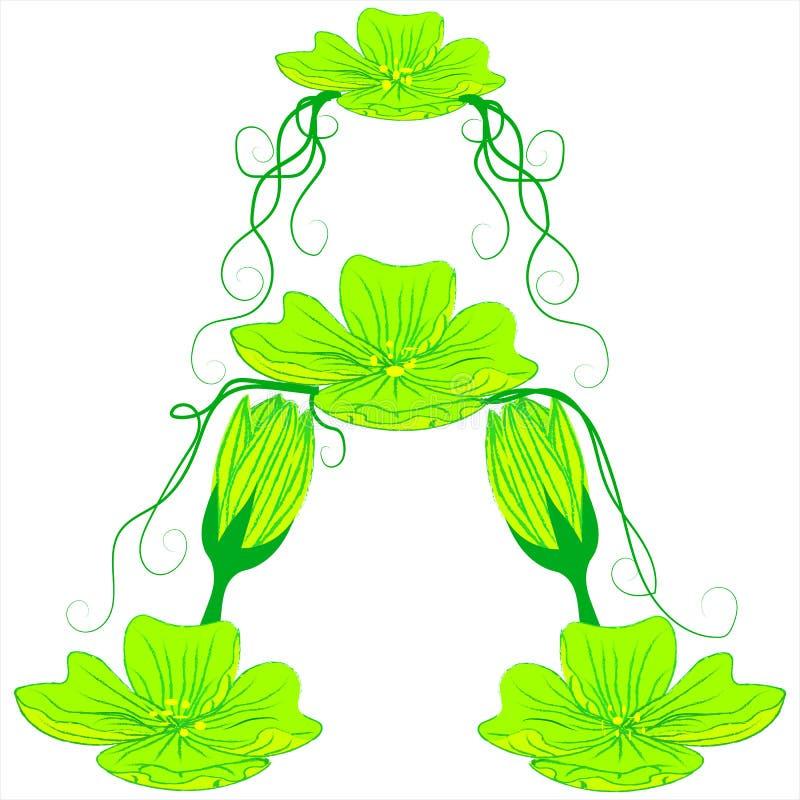 Fiore verde A della fonte immagini stock