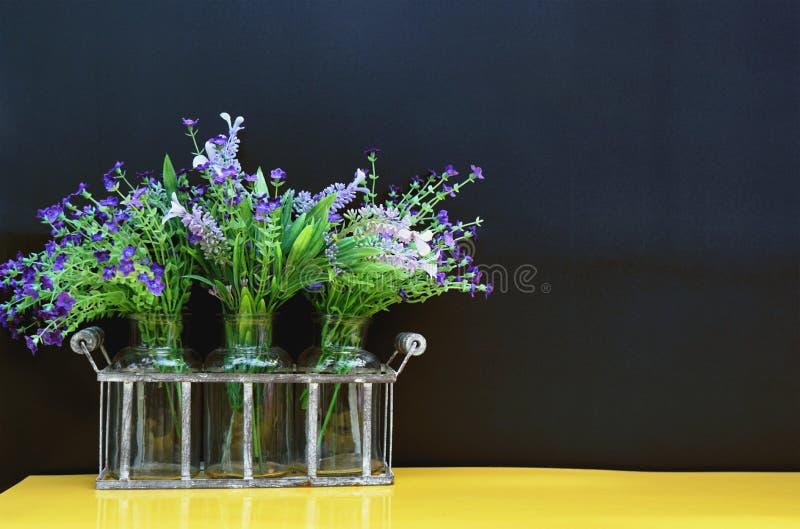 Fiore viola e bianco con le foglie verdi in bottiglie di vetro trasparenti fotografia stock