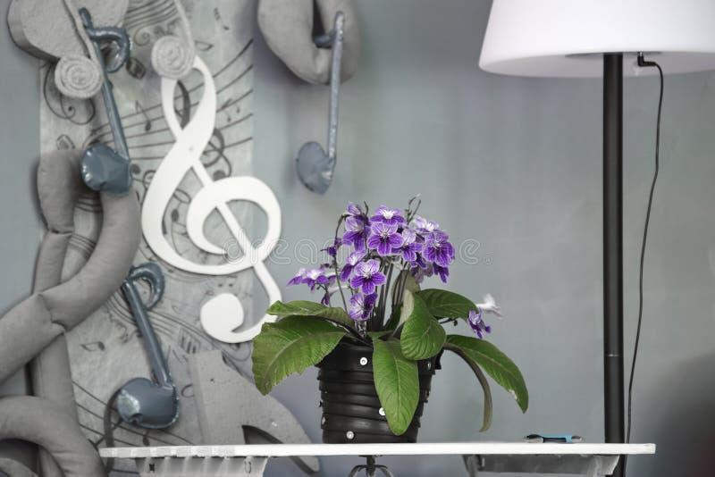 Fiore viola in un vaso all'interno della scena di un evento di musica, fondo immagine stock libera da diritti