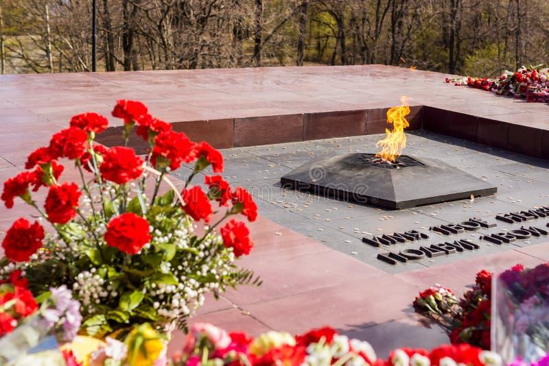 Fiori alla fiamma eterna il 9 maggio su Victory Day immagine stock