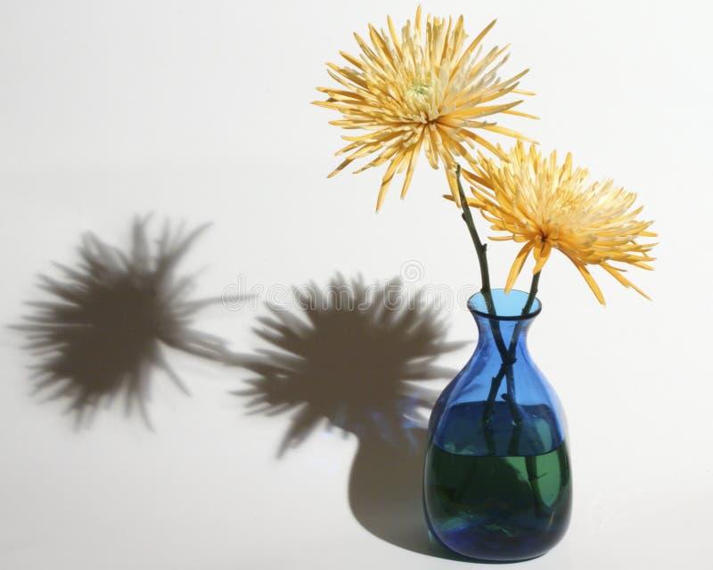 Fiori & vaso fotografia stock