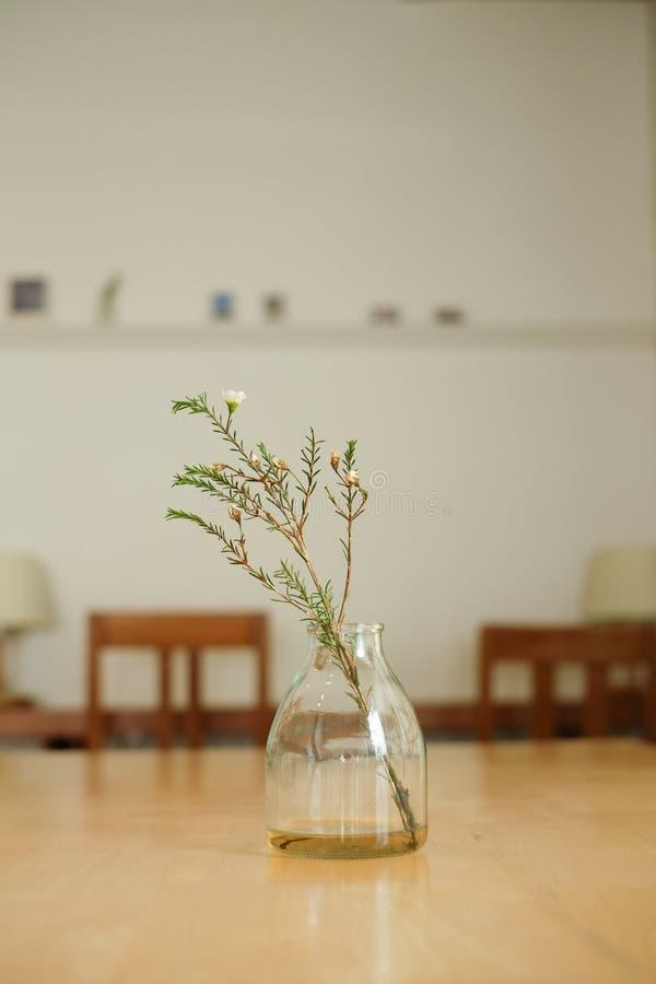 Fiori asciutti in barattolo sulla tavola di legno con il tono caldo immagine stock