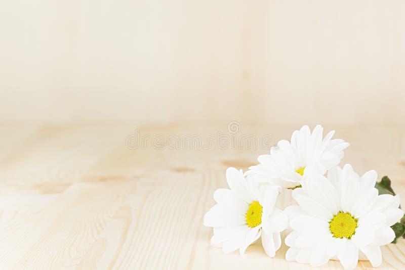 Fiori bianchi della primavera su un fondo di legno Copi lo spazio Fondo immagini stock