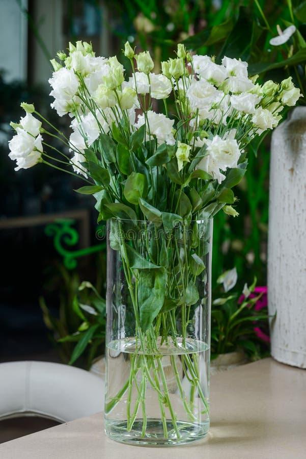Fiori bianchi di lisianthus in vaso fotografie stock libere da diritti