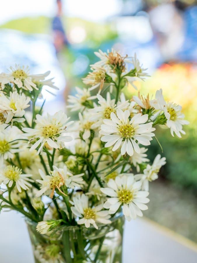 Fiori bianchi in vetro fotografie stock
