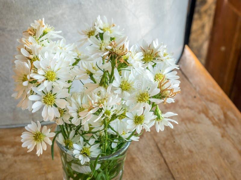 Fiori bianchi in vetro fotografie stock libere da diritti