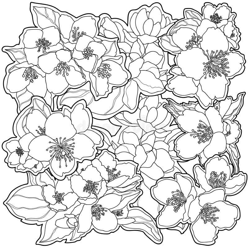 fiori in bianco e nero delicati del fondo immagini stock