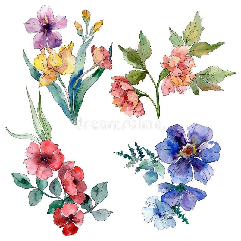 Fiori botanici floreali del mazzo del Wildflower Insieme della priorit? bassa dell'acquerello Elemento isolato dell'illustrazione illustrazione vettoriale