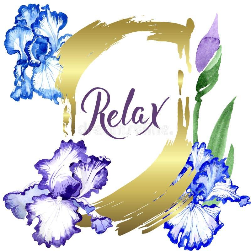 Fiori botanici floreali dell'iride blu Insieme dell'illustrazione del fondo dell'acquerello Quadrato dell'ornamento del confine d royalty illustrazione gratis