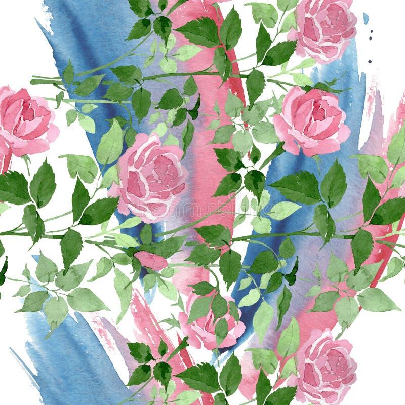 Fiori botanici floreali delle rose rosa del cespuglio Insieme dell'illustrazione del fondo dell'acquerello Modello senza cuciture royalty illustrazione gratis