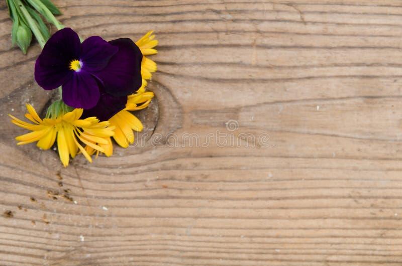 Fiori calendula e viole con un gambo nell'angolo in alto a sinistra su un nuovo bordo di legno immagini stock libere da diritti