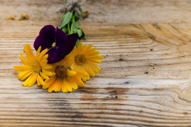 Fiori calendula e viole con un provenire qui sopra su un bordo di legno fotografia stock libera da diritti