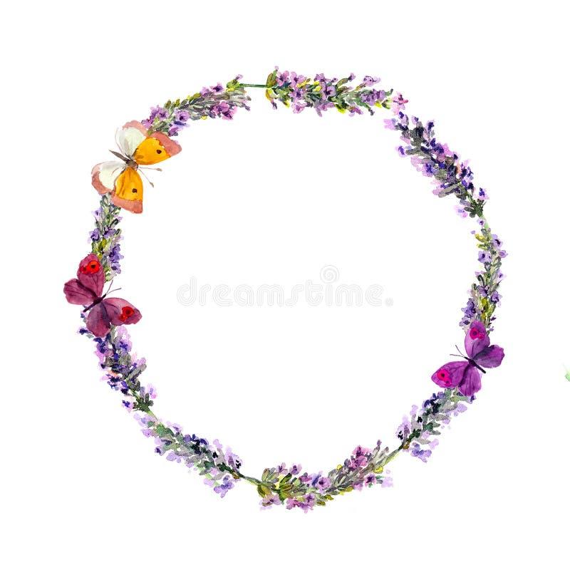 Fiori corona e farfalle della lavanda watercolor fotografia stock libera da diritti