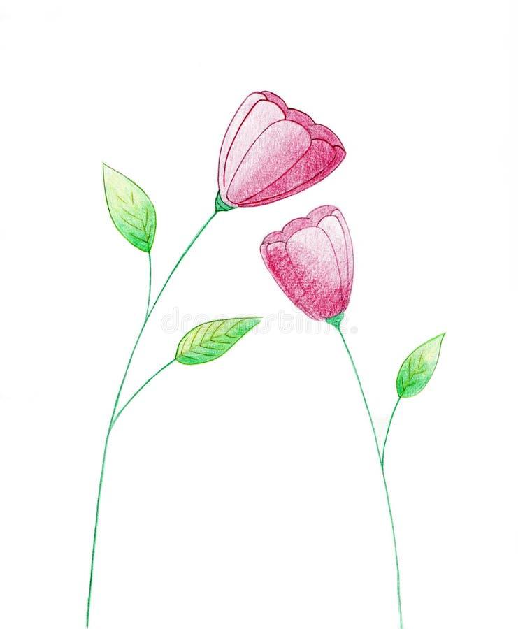 Fiori del biglietto di S. Valentino, illustrazione reale. illustrazione di stock